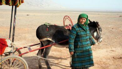 Фото Край уйгуров в Китае: дорога в Турфан