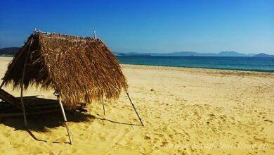 Фото Райский пляж Jungle, Нячанг Вьетнам