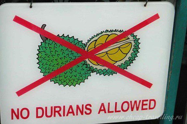 Запрет на вывоз дуриана