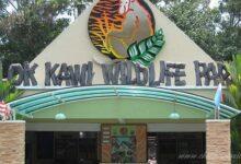 Фото Зоопарк в Кота-Кинабалу — Lok Kawi Wildlife Park