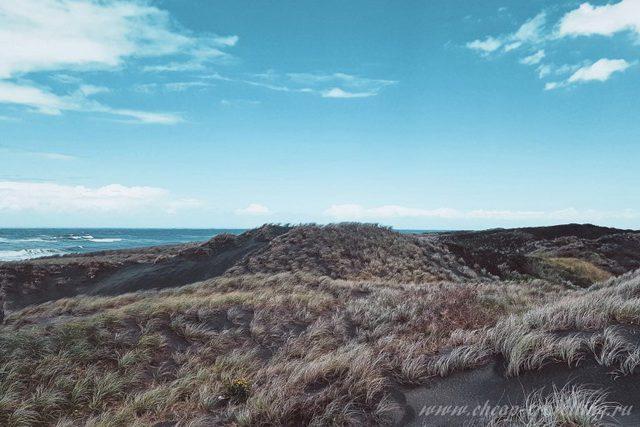 Пейзаж Новая Зеландия