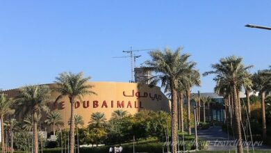 Фото Что интересного в «The Dubai Mall» в Дубаи ОАЭ?
