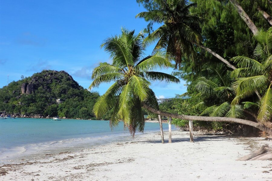 Пляж на острове Самуи Таиланд