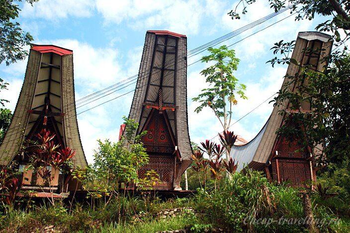 знаменитые домики тораджей